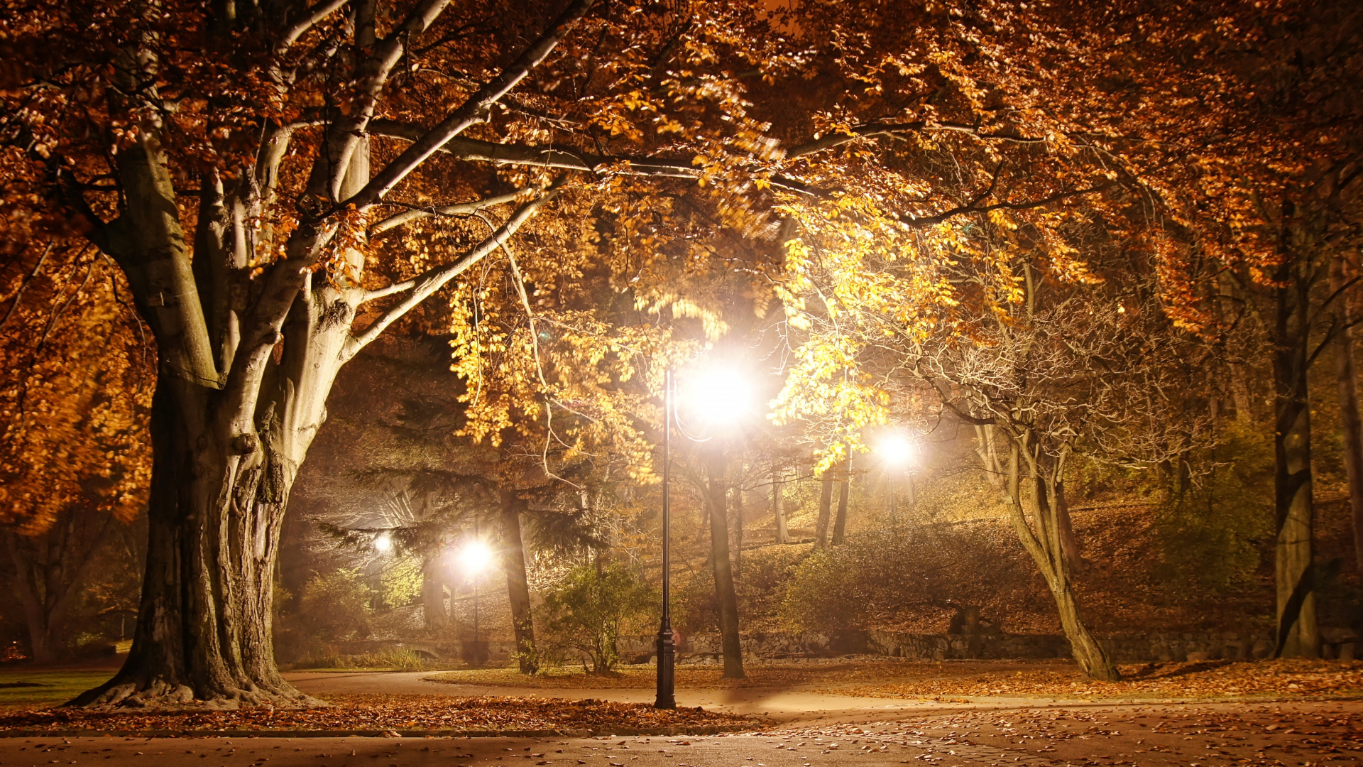 romantic-evening-autumn